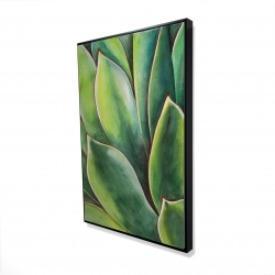Framed 24 x 36 - 3D - Watercolor agave plant