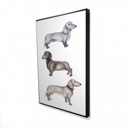 Framed 24 x 36 - 3D - Dachshund dogs