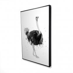 Framed 24 x 36 - 3D - Proud ostrich