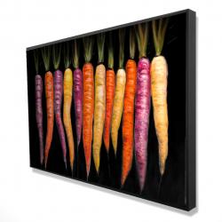 Framed 24 x 36 - 3D - Carrots varieties
