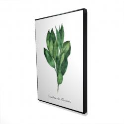 Framed 24 x 36 - 3D -  bay leaves bundle - fr