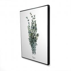 Framed 24 x 36 - 3D - Thyme leaves bundle - fr