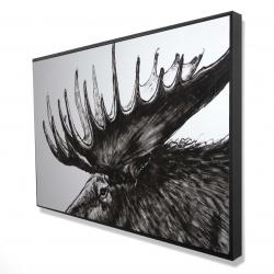 Framed 24 x 36 - 3D - Moose plume