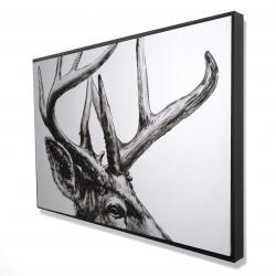 Framed 24 x 36 - 3D - Roe deer plume