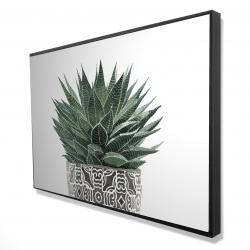 Framed 24 x 36 - 3D - Zebra plant succulent