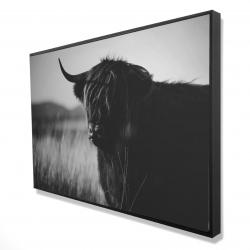 Framed 24 x 36 - 3D - Beautiful monochrome highland cow
