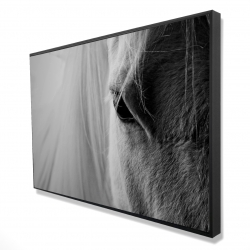 Framed 24 x 36 - 3D - The white horse eye