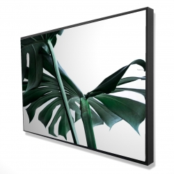 Framed 24 x 36 - 3D - Monstera deliciosa