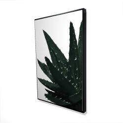 Framed 24 x 36 - 3D - Aloe plant