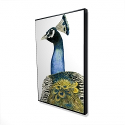 Framed 24 x 36 - 3D - Watercolor peacock