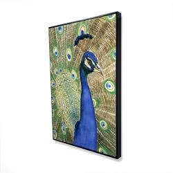 Framed 24 x 36 - 3D - Peacock