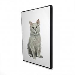 Framed 24 x 36 - 3D - British shorthair cat