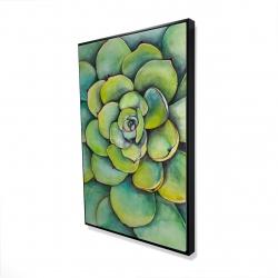 Framed 24 x 36 - 3D - Watercolor succulent plant