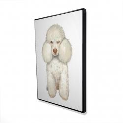 Framed 24 x 36 - 3D - French poodle