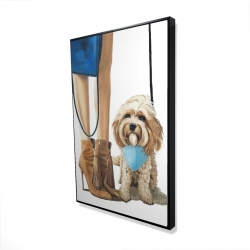Framed 24 x 36 - 3D - Fashionable cavoodle dog