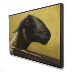 Framed 24 x 36 - 3D - Young ram
