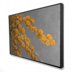 Framed 24 x 36 - 3D - Golden wattle plant