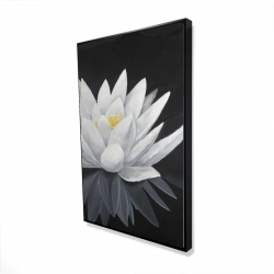 Framed 24 x 36 - 3D - Lotus flower with reflection