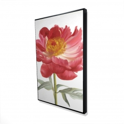 Framed 24 x 36 - 3D - Pink peony