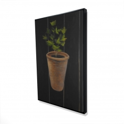 Framed 24 x 36 - 3D - Plant of parsley