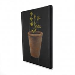 Framed 24 x 36 - 3D - Plant of marjolaine