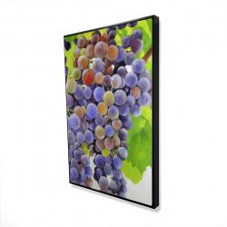 Framed 24 x 36 - 3D - Bunch of grapes