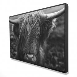 Framed 24 x 36 - 3D - Monochrome portrait highland cow