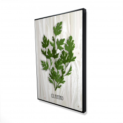 Framed 24 x 36 - 3D - Cilantro on wood