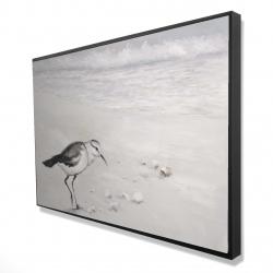 Framed 24 x 36 - 3D - Semipalmated sandpiper