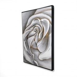Framed 24 x 36 - 3D - White rose delicate