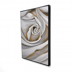 Framed 24 x 36 - 3D - White rose closeup