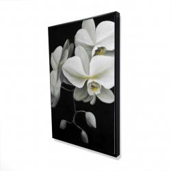 Framed 24 x 36 - 3D - White orchids
