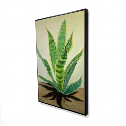 Framed 24 x 36 - 3D - Succulent plant mother-in-law's tongue