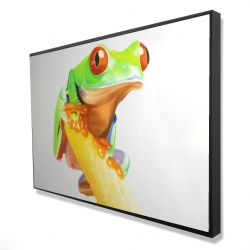 Framed 24 x 36 - 3D - Curious red eyed frog