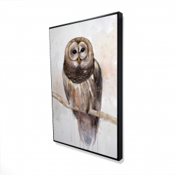 Framed 24 x 36 - 3D - Barred owl