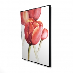 Framed 24 x 36 - 3D - Blossoming tulips closeup