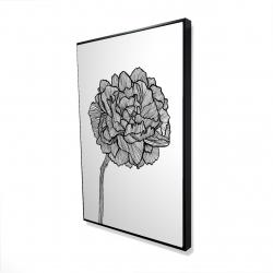 Framed 24 x 36 - 3D - Peony line