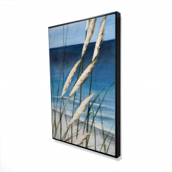 Framed 24 x 36 - 3D - Wild herbs in the wind on at the beach