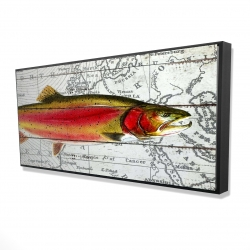 Framed 24 x 48 - 3D - Pink trout on a map