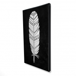 Framed 24 x 48 - 3D - Native american feather