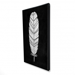 Framed 24 x 48 - 3D - Feather with patterns