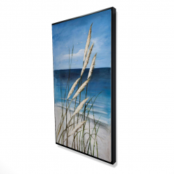 Framed 24 x 48 - 3D - Wild herbs in the wind on at the beach