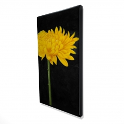 Framed 24 x 48 - 3D - Chrysanthemum