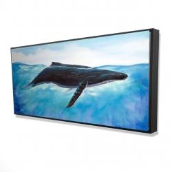Framed 24 x 48 - 3D - Blue whale
