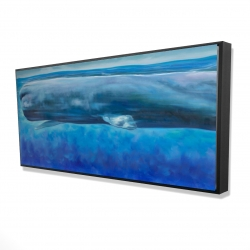 Framed 24 x 48 - 3D - Sperm whale