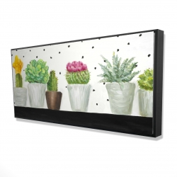 Framed 24 x 48 - 3D - Mini cactus and succulents
