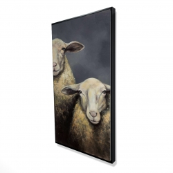 Framed 24 x 48 - 3D - Two sheeps