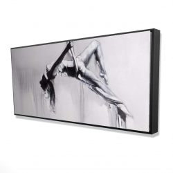 Framed 24 x 48 - 3D - Dancer on aerial contortion