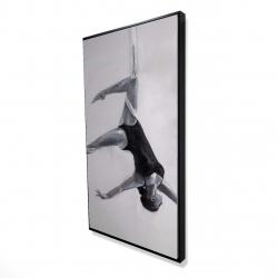 Framed 24 x 48 - 3D - Dancer on aerial silks