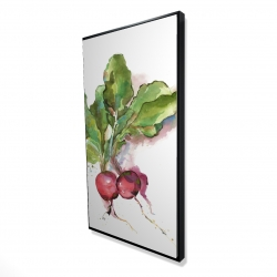 Framed 24 x 48 - 3D - Watercolor radish